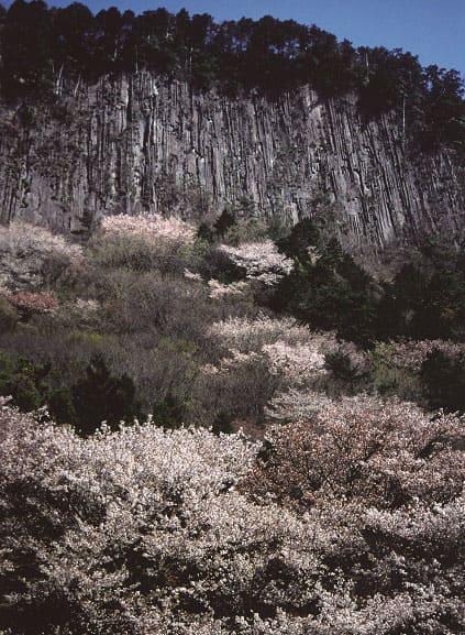 屏風岩公苑(びょうぶいわこうえん)