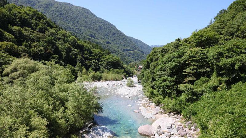 透き通る川のせせらぎに癒される