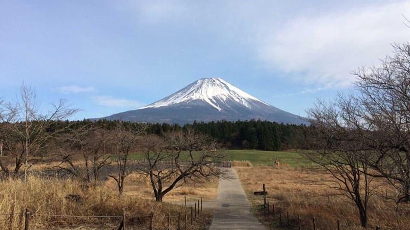 富士山を一望できる、絶景道の駅