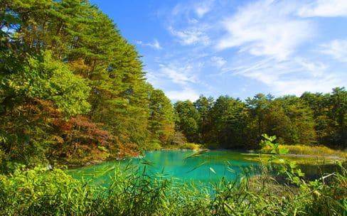 五色沼自然探勝路紅葉