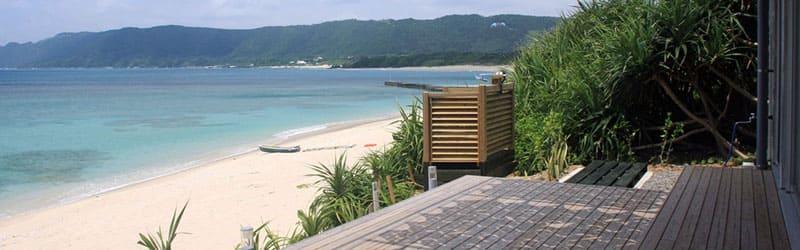 奄美大島の自然に誘われて