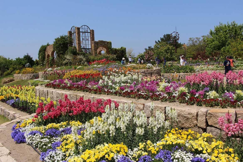 とにかく広い! 季節の花々に癒される「国営海の中道海浜公園」