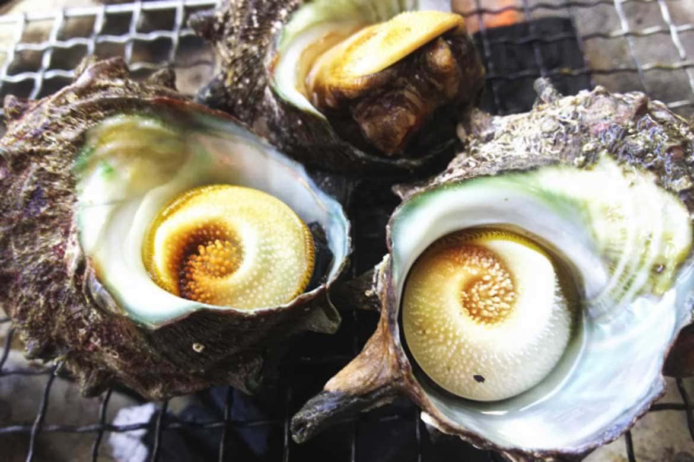 漁師町で食べる絶品海鮮料理