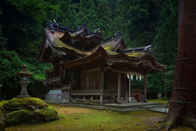 美しい和紙と紙の神様に出会う「越前和紙の里」