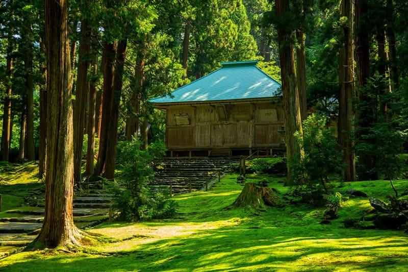 司馬遼太郎も絶賛した、苔が美しい「白山平泉寺」