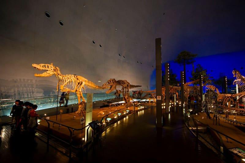 世界三大恐竜博物館のひとつ「福井県立恐竜博物館」