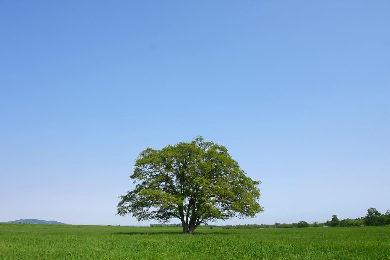 心に響く、北海道の絶景!
