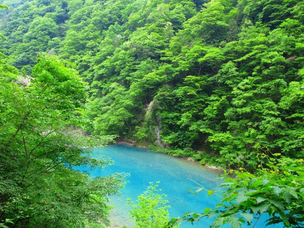 青い渓流と滝が涼やか!「抱返り渓谷」
