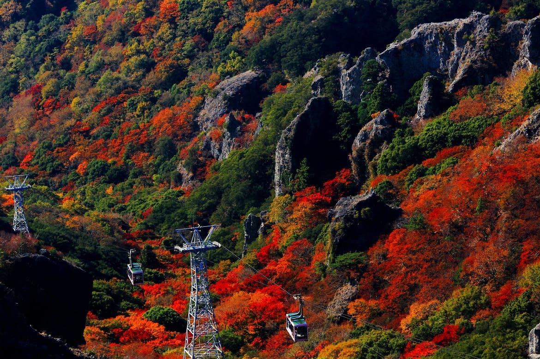 日本三大渓谷美にうっとり「寒霞渓」