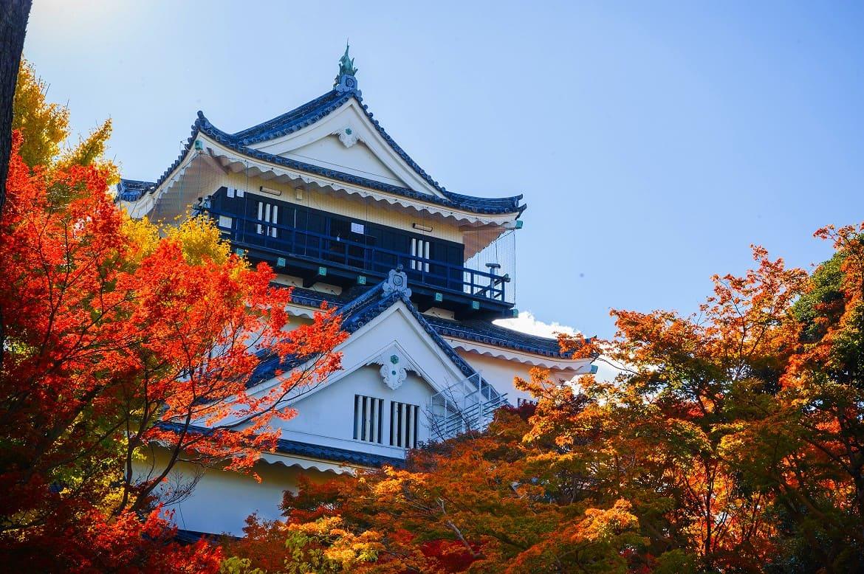 ラリーの合間に観光も!徳川家康公が生誕した「岡崎城」