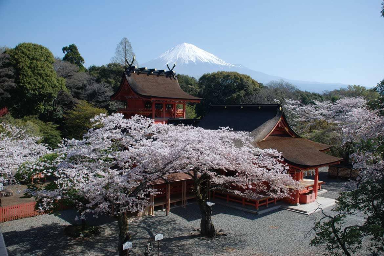 日本の富士信仰は富士宮にあり!「富士山本宮浅間神社」