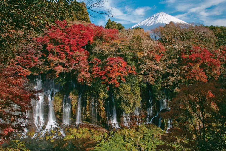 天下の名瀑「白糸の滝」