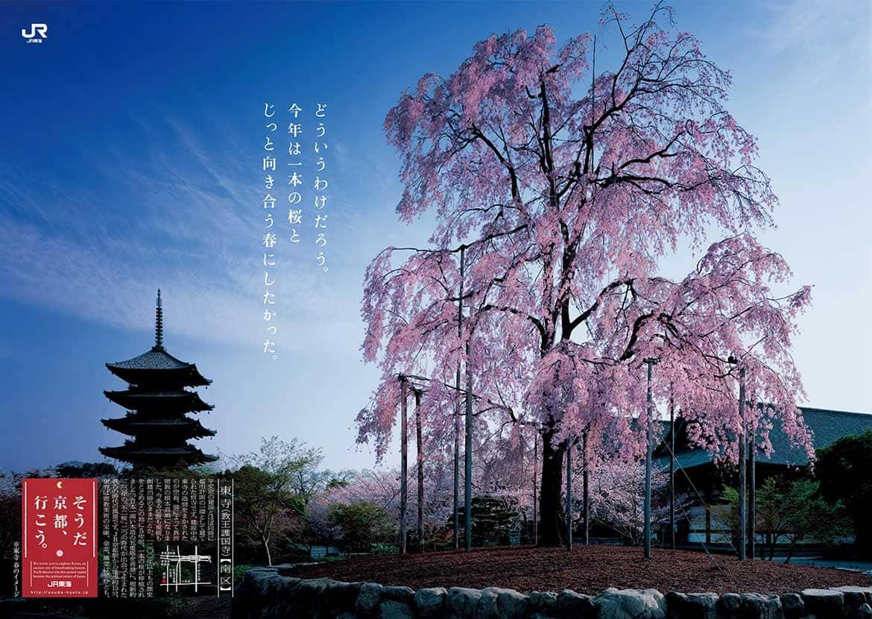 そうだ 京都、行こう。」2020年春。「私のお気に入り-京都の春篇 ...
