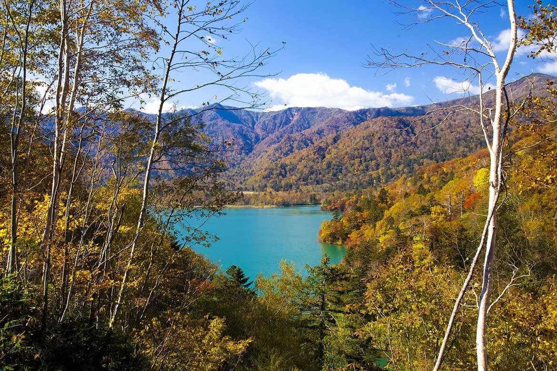 秘境の地の神秘の湖「オコタンペ湖 (展望台) 」