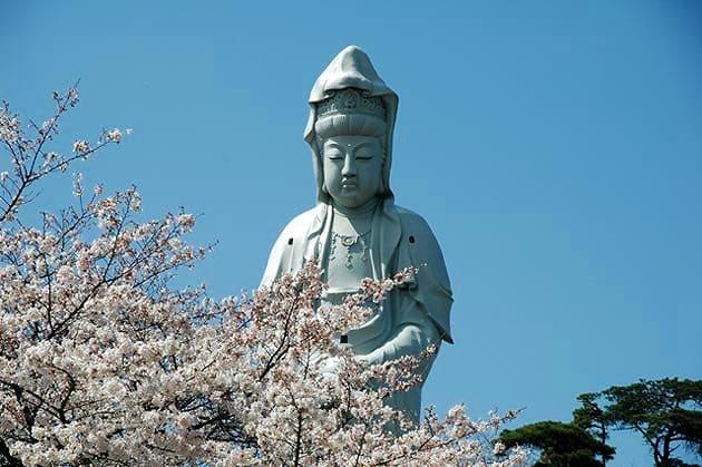 観音山から見つめる高崎のシンボル!「高崎白衣(びゃくえ)大観音」