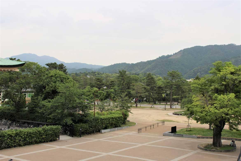 歴史を感じながら歩いてみたい岡崎公園【岡崎エリア】