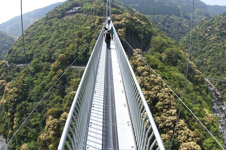 絶景とスリルを味わう!壮大な森を楽しむ「綾の照葉大吊橋」