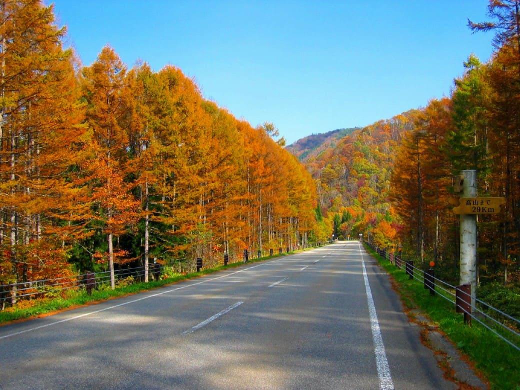 ~秋色に染まる「飛騨高山」を紅葉ドライブ~