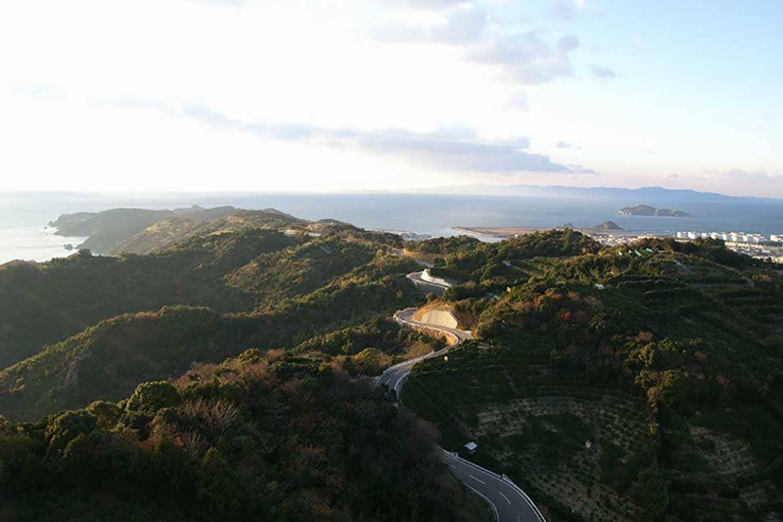 みかん畑と海を望む爽快ドライブ「有田みかん海道」