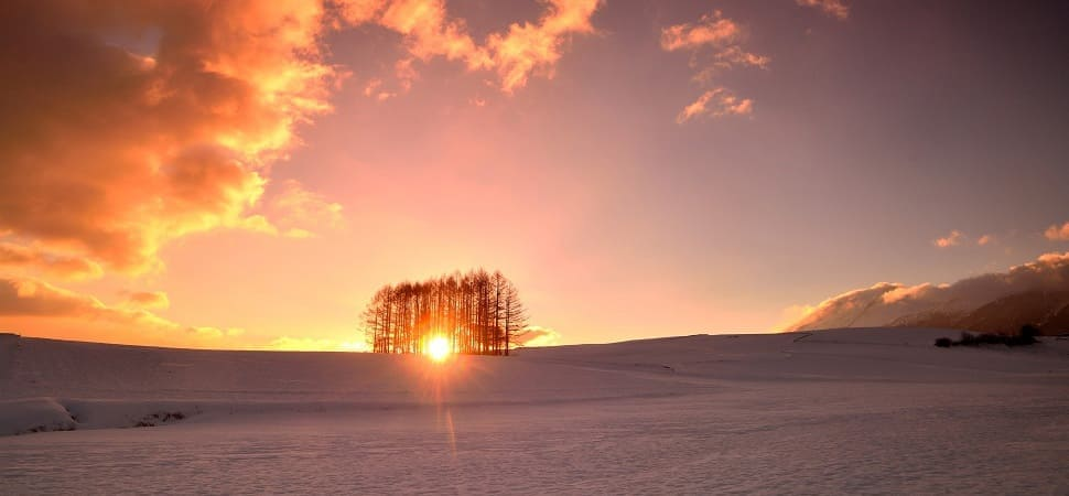 ~良質な雪と温泉でリフレッシュ。「群馬県嬬恋村」で冬の休日~