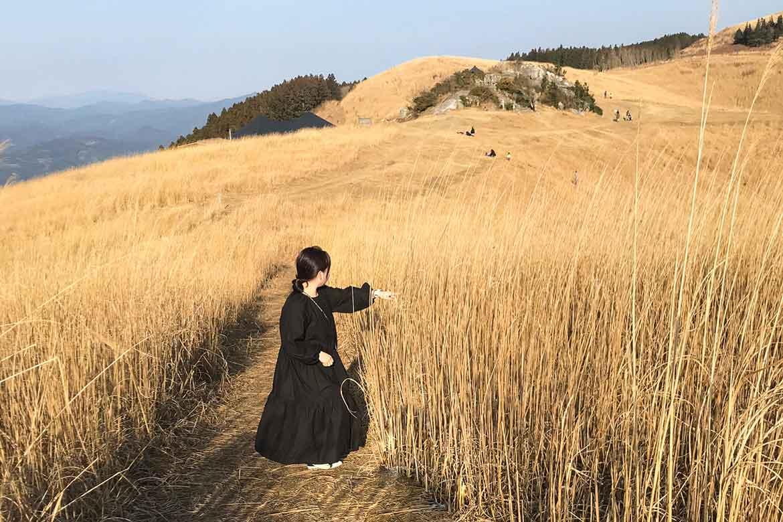 ススキの大草原「生石高原」でリフレッシュ!