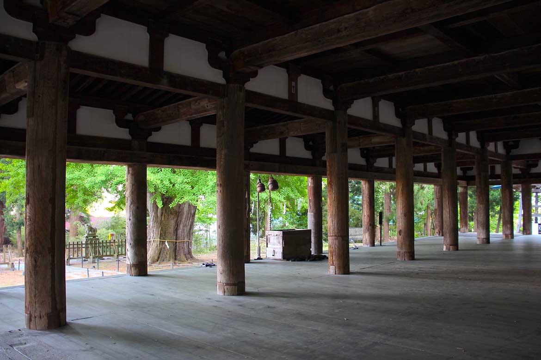 茅葺屋根の拝殿を彩る新緑の大イチョウ「新宮熊野神社」【喜多方市】