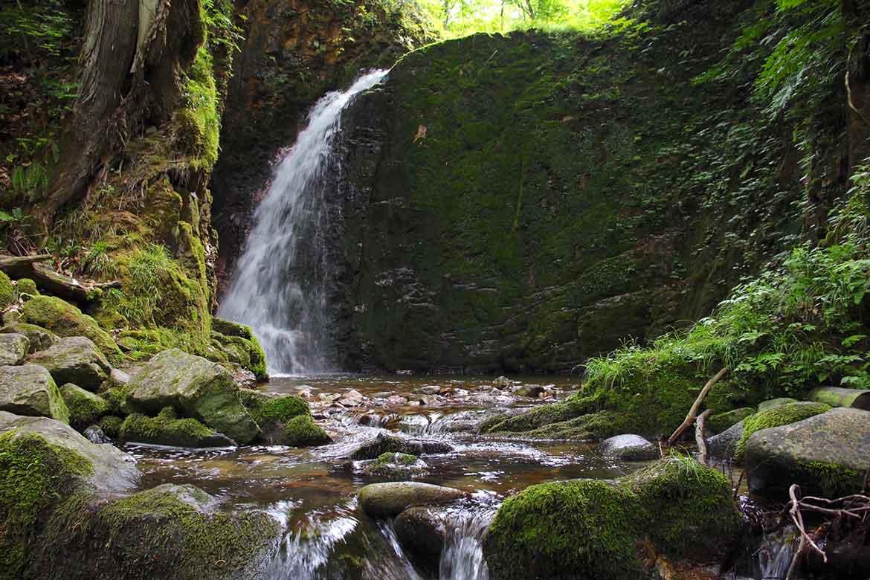 滝や杉並木を楽しみながら御本社へお参り「大山祇神社」【西会津町】