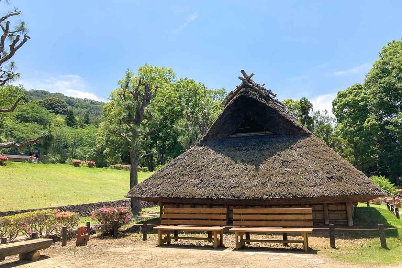 古墳や文化財も!和歌山の歴史が学べる「紀伊風土記の丘」