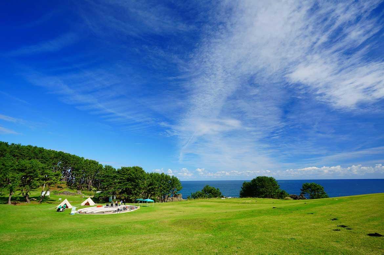 芸術家たちの心を震わせた海岸美。緑の絨毯に寝転んで、心と体を解放!「種差海岸天然芝生地」